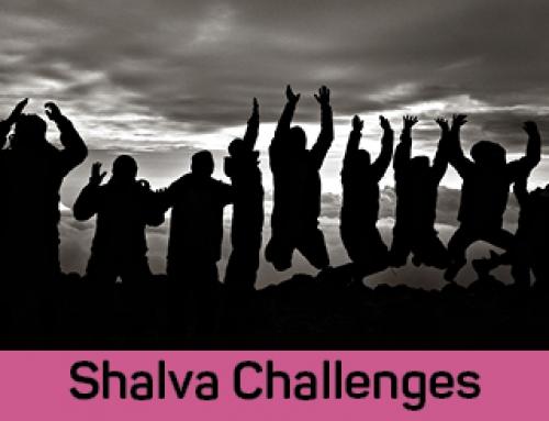 Participate in a SHALVA Challenge