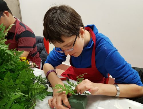 Vocational Training Programs for People with Disabilities
