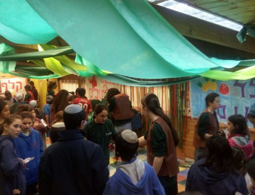 Shuk Purim at Shalva Gush