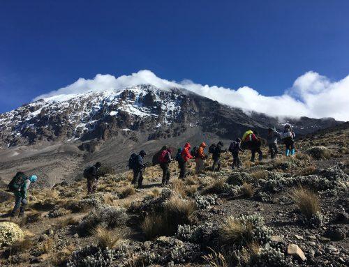 Conquering Kilimanjaro for Shalva